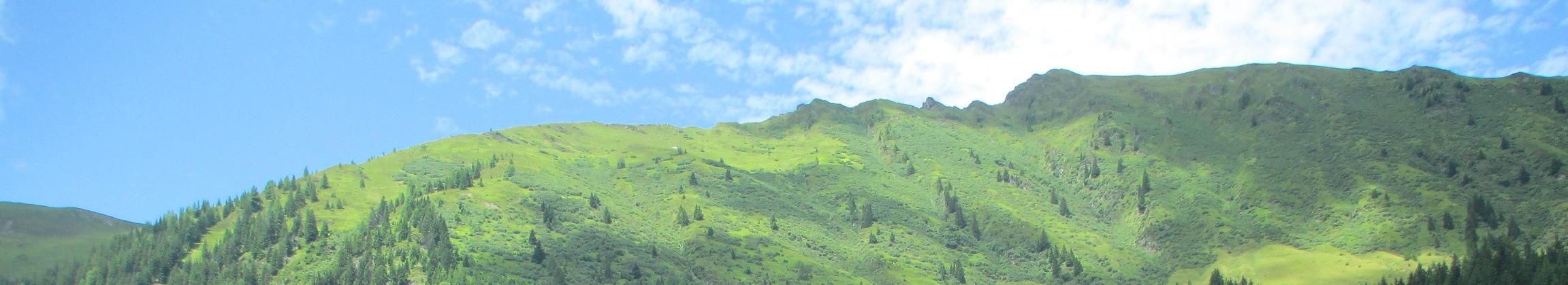 Berge der Diabär-Alm